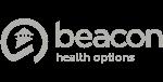 ins-logo-beacon